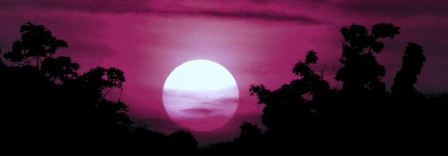moonrise magenta crp 900x315